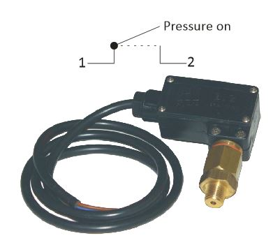 240v, 15Amp, 2 Wire Brass Pressure Switches