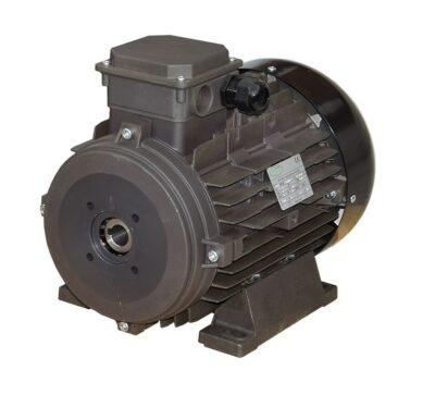 10 HP, 1450 RPM, 3 Phase, Hollow Shaft Ravel Motor